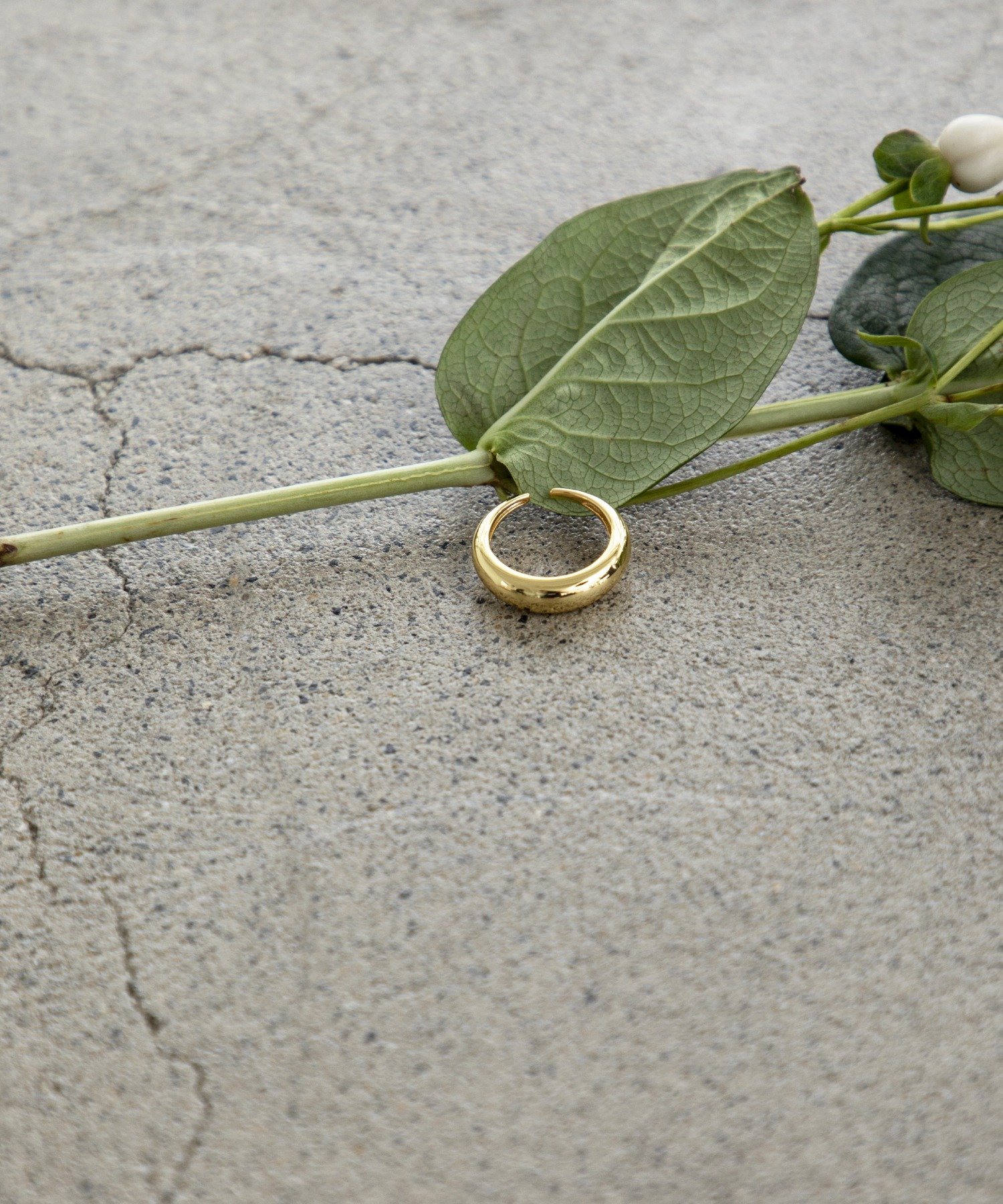 S925 simple ring
