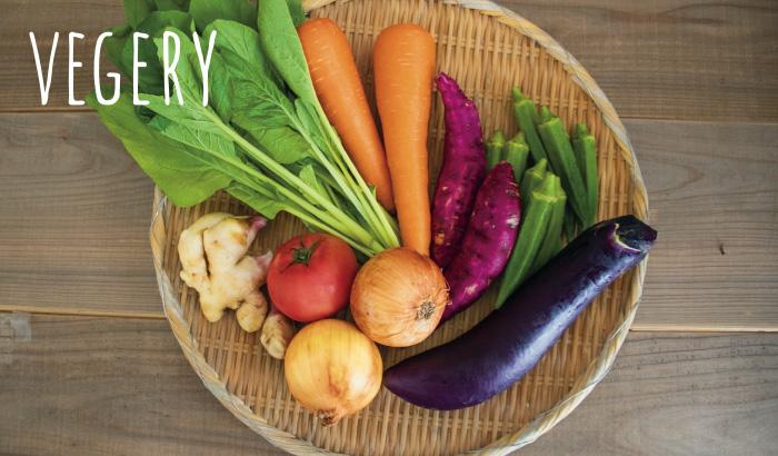 オーガニック野菜の宅配サービス「ベジリー」クーポン